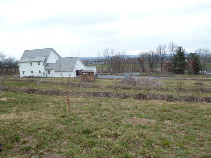 Phil Williams' Permaculture farm