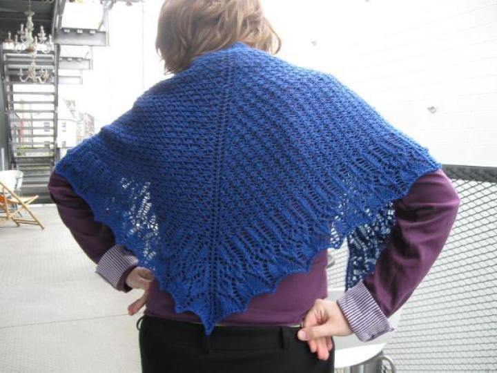 I did knit a shawl in 2012