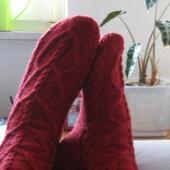 My Vampire Boyfriend socks